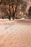 Parque del invierno en la opinión de la vertical de la noche Foto de archivo libre de regalías