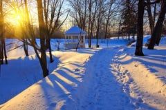 Parque del invierno en la puesta del sol Fotografía de archivo