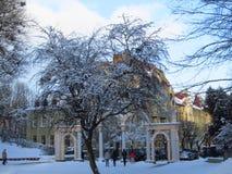 Parque del invierno en Lviv Imagen de archivo libre de regalías