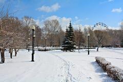Parque del invierno en nieve Foto de archivo