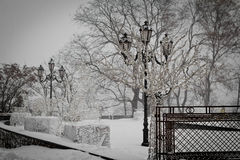 Parque del invierno en nieve Fotos de archivo libres de regalías