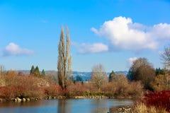 Parque del lago commonwealth Fotos de archivo libres de regalías
