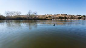 Parque del lago con el fondo de Mountain View del desierto Imagenes de archivo