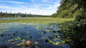 Parque del lago deer, Metrotown Burnaby Fotos de archivo libres de regalías