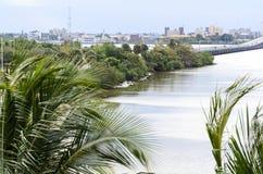 Parque del norte de la orilla a lo largo del río de Caloosahatchee Imagen de archivo libre de regalías