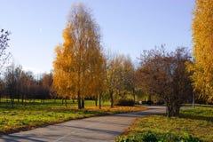 Parque del otoño Fotos de archivo libres de regalías