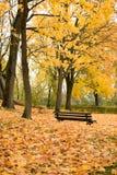 Parque del otoño con el banco Fotos de archivo