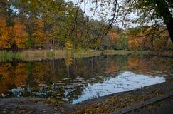 Parque del otoño con un lago Imagen de archivo libre de regalías