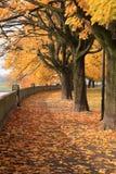 Parque del otoño en Kraków Fotografía de archivo libre de regalías