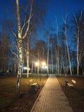 Parque del otoño en la noche Foto de archivo libre de regalías