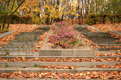 Parque del otoño en Moscú Imágenes de archivo libres de regalías