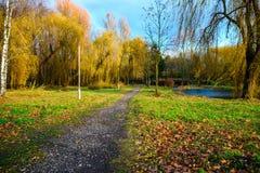 Parque del otoño en Ucrania Foto de archivo libre de regalías