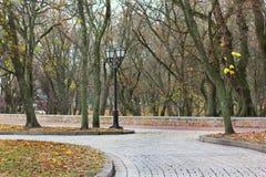 Parque del otoño Follaje colorido en el parque del otoño fotografía de archivo libre de regalías