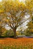 Parque del otoño y soporte de venda imágenes de archivo libres de regalías
