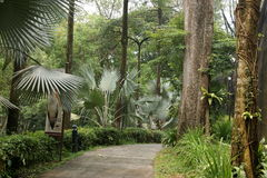 Parque del pájaro de Kuala Lumpur Fotos de archivo libres de regalías