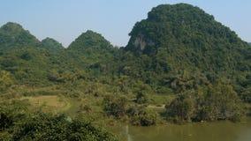 Parque del pájaro en Tam Coc