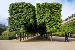Parque del Palais-Royal en París Fotografía de archivo libre de regalías