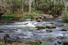 Parque del río de Hillsborough Fotografía de archivo