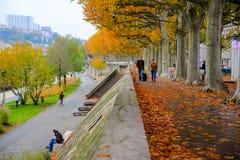 Parque del río de Lyon, Francia Imagen de archivo