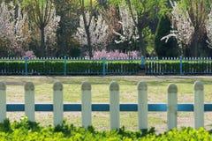 Parque del resorte Fotografía de archivo