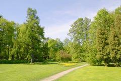 Parque del resorte con la calzada Imagen de archivo libre de regalías