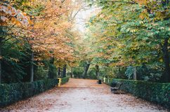 Parque del Retiro, Madrid Royalty-vrije Stock Fotografie