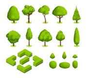 Parque del vector 3d y árboles y arbustos isométricos del jardín El bosque verde planta la colección Imágenes de archivo libres de regalías
