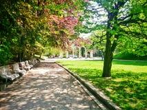 Parque del verano imagen de archivo libre de regalías