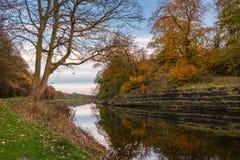 Parque do beira-rio de Wansbeck no outono Fotografia de Stock Royalty Free
