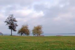 Parque do castelo de Schwerin, Alemanha Fotografia de Stock