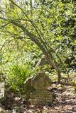 Parque do cemitério das aldeolas da torre em Londres, Reino Unido fotos de stock