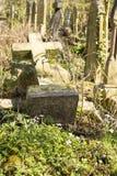 Parque do cemitério das aldeolas da torre em Londres, Reino Unido foto de stock