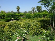 Parque do hasna de Lalla em C4marraquexe Marrocos Fotografia de Stock Royalty Free