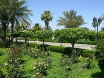 Parque do hasna de Lalla em C4marraquexe Marrocos Imagens de Stock Royalty Free