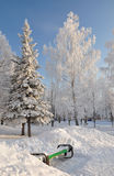 Parque do inverno. imagem de stock