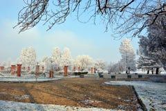 Parque do inverno imagens de stock