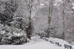 Parque do inverno em Dusseldorf Imagens de Stock Royalty Free