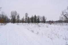 Parque do inverno em Kiev Imagem de Stock