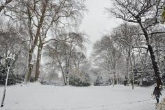 Parque do inverno na cidade Dusseldorf do centro Fotografia de Stock Royalty Free