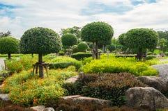 Parque do jardim em público Foto de Stock Royalty Free