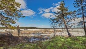 Parque do kansallispuisto de Rokuan em Finlandia Fotografia de Stock