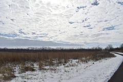Parque do metro do bosque de Scioto no inverno fotografia de stock