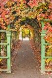 Parque do outono Imagem de Stock Royalty Free
