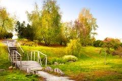 Parque do outono Fotos de Stock