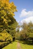 Parque do outono Foto de Stock