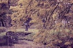 Parque do outono com o rio toning foto de stock