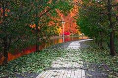 Parque do outono em Feofania Fotos de Stock Royalty Free