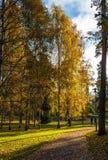 Parque do outono em Helsínquia imagem de stock