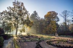 Parque do outono na manhã fotos de stock royalty free