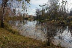 Parque do outono refletido belamente no lago fotos de stock royalty free